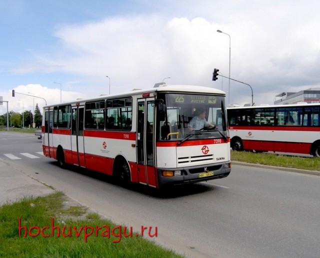 автобусы действуют обычные